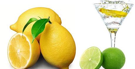 lemons1604_01